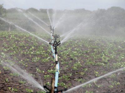 irrigazione03