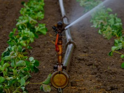 irrigazione06